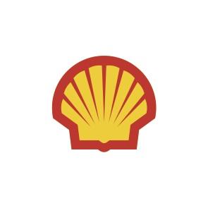 Shell_nov2012_PECTEN_RGB